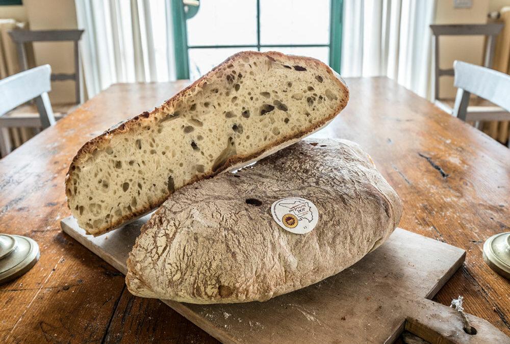 Pane Toscano DOP, impariamo a riconoscerlo! L'identikit di un caposaldo della nostra alimentazione quotidiana