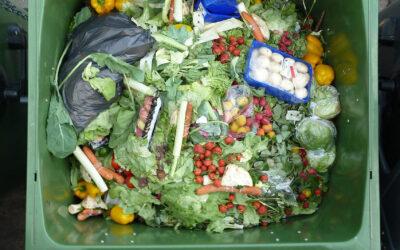 Sprecare meno, mangiare tutti. I vantaggi della lotta allo spreco alimentare per il pianeta